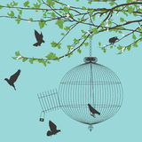 Freedom birds. Vintage card with birds and open birdcage Royalty Free Stock Photo
