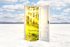 Freedom concept. Abstract open door with summer landscape view in desert. Freedom concept. 3D Rendering Royalty Free Stock Image