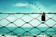 surreal enigmatic picture of flying birds and frame . beach landscape royalty free stock image