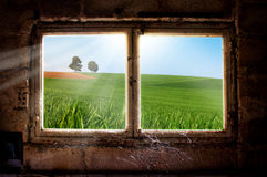 Freedom concept. Life out of windows, landscape with meadow and trees, freedom life, concept Royalty Free Stock Photography