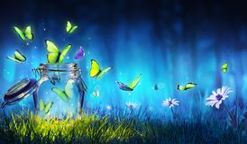 Freedom Concept - Magic Butterflies Flying Out Of The Jar royalty free stock photos
