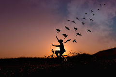 Freedom concept, Silhouette of happy person raised arms on bicyc. Le in natural scene, Birds fly on beautiful sunrise or sunset sky Royalty Free Stock Photos