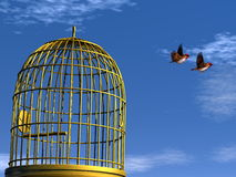 Freedom - 3D render. Two blue finch birds flying out of the cage - 3D render Stock Photos