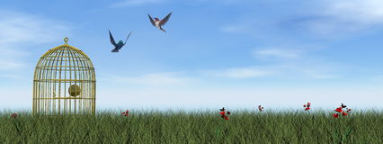 Freedom - 3D render. Two hummingbirds flying out of the cage by day - 3D render Stock Image
