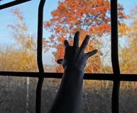 Freedom denied. An hand is trying to reach from a dark and barred place  light , freedom and colors Royalty Free Stock Photos