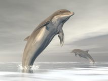 Freedom of the dolphins - 3D render Royalty Free Stock Photography