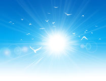 Freedom flight. White birds flight in front of the sunshine in a clear blue sky royalty free illustration