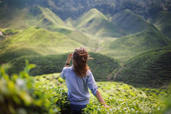 Freedom girl in mountains. Freedom girl in beautiful mountains Stock Images