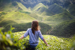 Freedom girl in mountains Stock Images