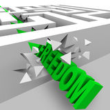 Freedom - Green Word Breaks Through Maze Walls vector illustration
