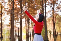 Freedom happy woman feeling free in autumn nature air stock images