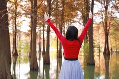 Freedom happy woman feeling free in autumn nature air stock photography
