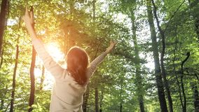 Freedom ideas concept, woman with raised hands up in forest Royalty Free Stock Photography