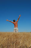 Freedom, man jumping. In a field of wheat with bue sky Royalty Free Stock Photography