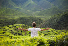 Freedom  man in mountains Royalty Free Stock Photography