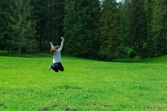 Freedom on meadow Royalty Free Stock Image