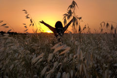 Freedom. Photo captured in pero pine zone, Sintra, Portugal Stock Images