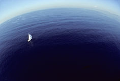Freedom of the seas. Bird's eye view of a sailboat and the infinite horizon Royalty Free Stock Images