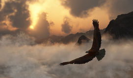 Freedom Soars A1 Royalty Free Stock Images