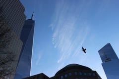 Freedom Tower Foto de archivo