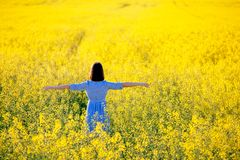 Freedom. Vacation concept. Summer nature. Girl in blue dress in stock images