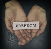 Freedom. Woman holding word Freedom in her palms. Close up. Vignette Stock Photos