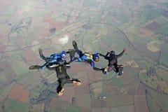freefall cztery skydivers zdjęcie royalty free
