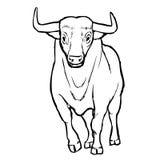 Freehand иллюстрация эскиза bul Стоковая Фотография RF