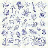 Freehand drawing autumn items on a sheet Royalty Free Stock Photography