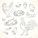 Freehand drawing chicken items Royalty Free Stock Photography