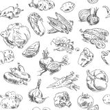 Freehand drawing vegetables. Seamless pattern Stock Image