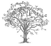 Freehand rysunku drzewo Obrazy Royalty Free