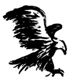Freehand sketch illustration of eagle, hawk bird. Doodle hand drawn Royalty Free Stock Photography