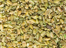Freekeh grains for a background Stock Images