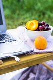 Freelance outdoor summer work concept. Work on a laptop on a picnic in nature - next to a bowl of cherries and apricots. Freelancer work concept Royalty Free Stock Image