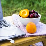 Freelance outdoor summer work concept. Work on a laptop on a picnic in nature - next to a bowl of cherries and apricots. Freelancer work concept Stock Image