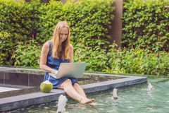 Freelancer fêmea novo que senta-se perto da associação com seu portátil dentro Foto de Stock