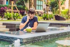 Freelancer novo que trabalha em férias ao lado da piscina fotos de stock royalty free