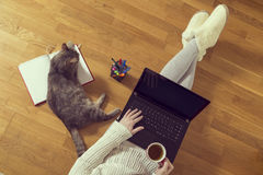 Freelancer work environment Royalty Free Stock Image