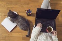 Freelancer work environment Stock Image