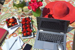 Freelancing and work from home garden in the summer Stock Photography