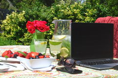 Freelancing and work from home garden in the summer Royalty Free Stock Photography