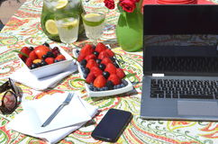 Freelancing and work from home garden in the summer Stock Photo