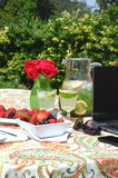 Freelancing and work from home garden in the summer. And eating snack of fresh berries and minty lemonade Stock Images