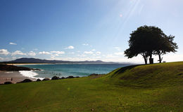 Freemans海滩 图库摄影