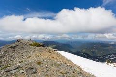 Freemont utkik i Mt Trees och gräs Royaltyfri Fotografi