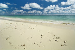 Freeport beach, Grand Bahama Island Royalty Free Stock Photo