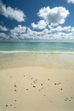 Freeport beach, Grand Bahama Island Royalty Free Stock Images
