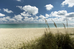 Freeport beach, Grand Bahama Island. Bahamas royalty free stock images