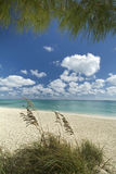 Freeport beach, Grand Bahama Island Royalty Free Stock Photos
